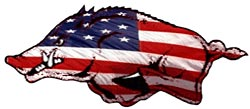 God Bless America and Go Hogs!